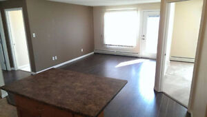Two bedroom condo apartment for rent at South Terwillegar