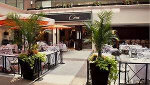 """AUCTION! """" CREME"""" in Yorkville Resto / BAR  JULY 18 Onsite LIVE"""