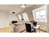 WOW 2B flat, Pets allowed, newly refurbished, furnished in Somerset Court Lexham Gardens London RL6