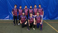 Be a part of Ontario's Biggest Winter Cricket League