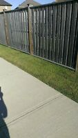Yard Clean Up and Much More.  Cheap Rates