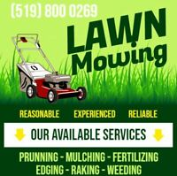 Garden Maintenance, Lawn Mowing, Edging, Yard Cleanup, Trimming