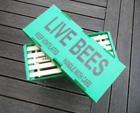 Honey bees delivered