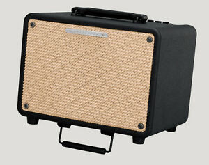 30w Acoustic Guitar Combo Amp by IBANEZ, brand new