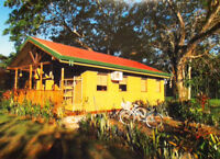 Costa Rica - Cabin Rental for Nature Lovers and Tree Huggers...