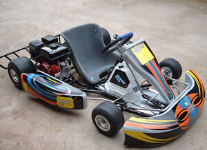2 New Go karts +73 km/h top speed!!!!!! Reduced to sell !!!