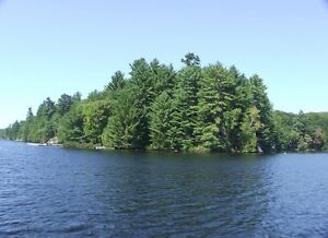 Point of Land with Sand Beach on Otter Lake