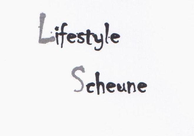 lifestylescheunede