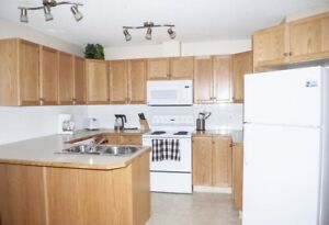 Fully Furnished One Bedroom Plus Den - All Utilities Incl!