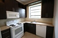 Large renovated 3  with NEW KITCHEN in Monkland village (NDG)