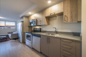 Subletter Wanted! South End - Available Immediately