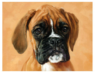 artav Boxer 11 Dog Pet Dog Pet Art Print on Watercolor Paper