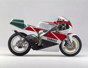 In search of a TZ 250