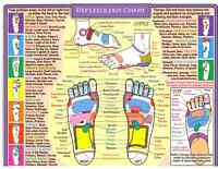 Pain/Inflammation/Anxiety? Reflexology can Help!