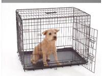 Black dog crate - intermediary