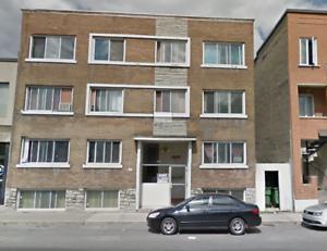 4035 Rue Hochelaga 06