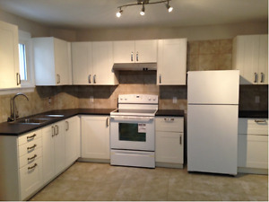 Fully renovated and all inclusive 2 bedroom – close to downtown