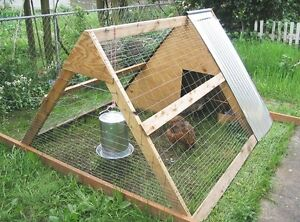 Looking for small chicken pen/coop!