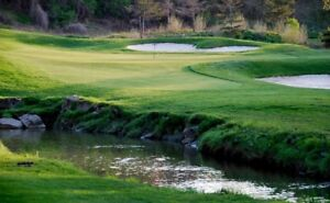 Royal Woodbine Golf Club FOURSOME