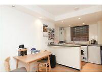 NEW MODERN STUDIO* wooden floor* Zone 1 Sloane Square - Pimlico * CHEAP £250pw
