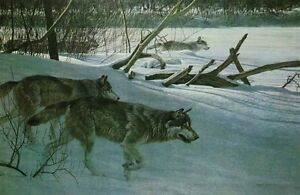 Wolf Pack in Moonlight by Robert Bateman Strathcona County Edmonton Area image 1
