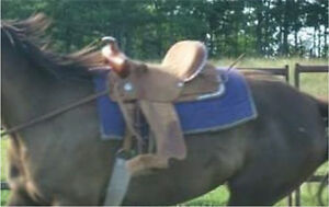 Purple tack: Price reduced, want gone!