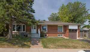 BASEMENT APARTMENT FOR RENT LAWRENCE AVENUE EAST