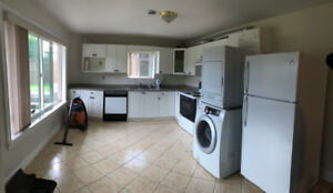 3 Bed basement suite in fleetwood. Available now (fleetwood)