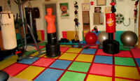 Personal training/Kik-boxing/Fitness (West Island)