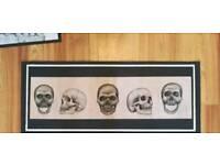 Original artwork- art, skull, anatomical, medical, skeleton, pen, pencil, charcoal