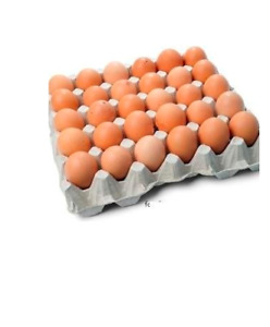 Offering Organic brown Eggs for sale $4 per Dozen in sackville