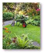 Lawn Mowing & Gardening. Camden Camden Area Preview