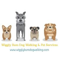Looking for Pet Care Specialists and Walkers