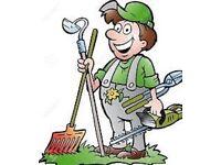 Gardening/landscaping 07824630729