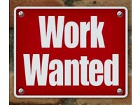 CSCS SITE LABORING WORK WANTED