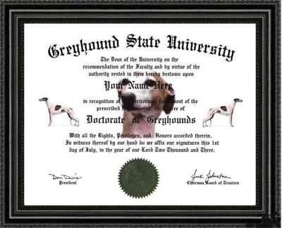 Greyhound Dog Lover's Diploma / Degree Custom made and Designed Gag Gift