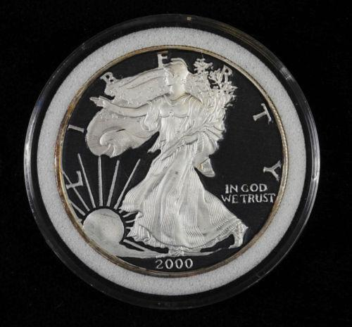 Colorized Silver Dollar Ebay