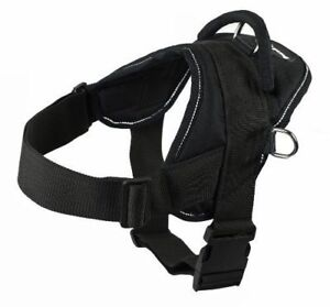 XL Dog Harness. Dean and tyler.