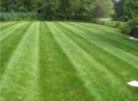 Reputable lawn care company servicing Cornwall and area