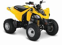 2016 Can-Am DS 250 2x4