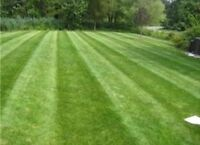 Reputable outdoor maintenance company is seeking LawnCare Tech