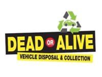 Cars wanted dead or alive