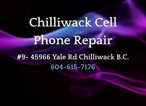 iPod Repair in Chilliwack BC   *** professional store ***