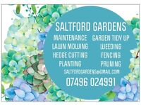 Saltford Gardens - Bristol Bath Gardener, Maintenance and Landscaping