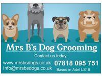 Mrs B's dog grooming