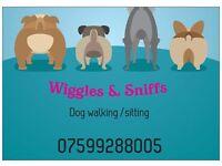 dog walker / sitter G3 area West end + City Centre