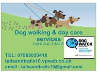 tails and trails dog walking
