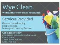 Wye Clean