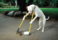 Doggy Doo Doo Removal Services