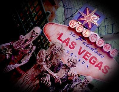Vegas Local69
